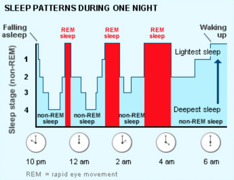 Sleep cycle graph, sleep patterns